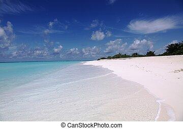 Island landscape in Maldives