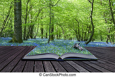 Magical book with contents spilling into landscape...