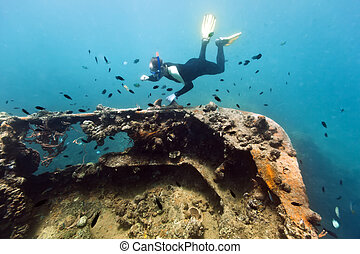 Shipwreck and diver - Diver exploring shipwreck underwater....