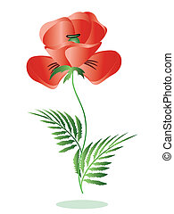 Red poppy,symbol memory,vector.