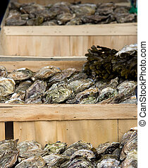 Crates of oysters - Crates of fresh oysters for sale at a...
