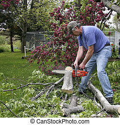 chainsaw cutting downed tree