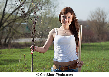 woman planting tree outdoor - middle age woman planting tree...