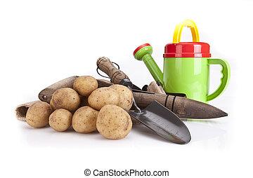 Images photos de dibber 60 photos et images libres de - Arrosage pomme de terre ...