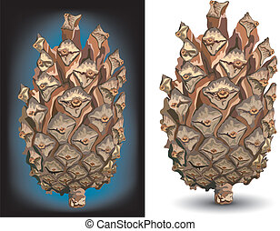 Pine cone isolated on white color background, vector...