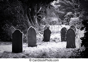 cemitério, &, neve