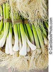 bunch of garlic fresh raw vegetables food - bunch of garlic...