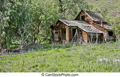 old mountain cabin - abandon mountain cabin in a green...