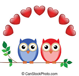 girl and boy owls - Valentine girl and boy owls sat on a...