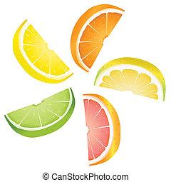 Citrus slices - A selection of citrus fruit slices arranged...