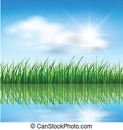 Nature background, green grass over a blue sky, vector