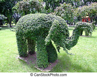 Elephant shape bush, Thailand. - Elephant shape bush,...