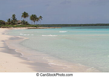 Unspoiled Beach - A deserted, calm beach in Cuba