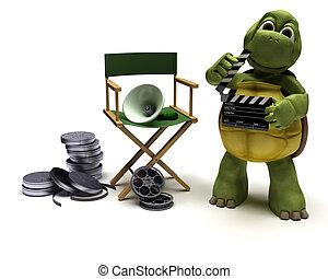 烏龜, 主任, 椅子