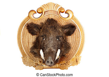 Stuffed animal of a head of a wild boar on a wooden board