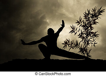 Kung Fu Martial Art Background - Kung Fu Martial Art Grey...