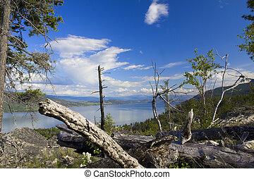 Okanagan Lake view - View of Okanagan Lake with dead fall in...