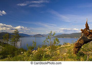 Calm lake landscape - Calm lake view in spring with warm...