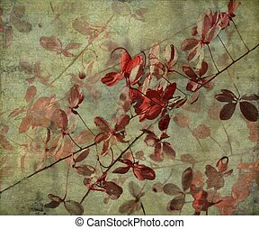 Grunge Antique Flower Background
