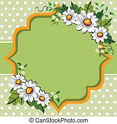 primavera, marco, flor, margarita