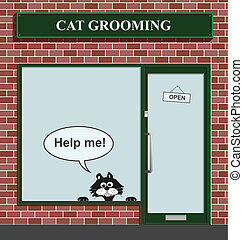 cat grooming establishment - Reluctant feline not happy to...