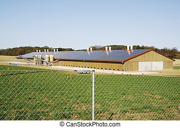 Chicken farm - Free range chicken farm with photovoltaic on...
