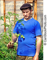 A man with a bush tomato