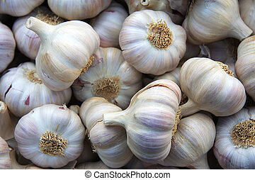Garlic background