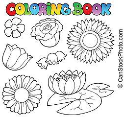 coloration, Livre, fleurs, ensemble