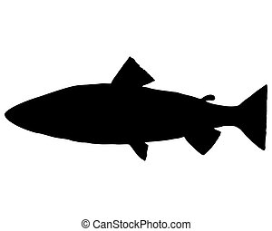 Trout silhouette