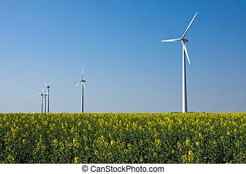 Windwheels in a field of rapeseed - Lot of windwheels in a...