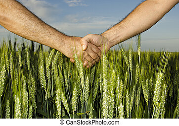 Shaking hands in the field