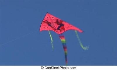 kite 2 - kite flying in the sky