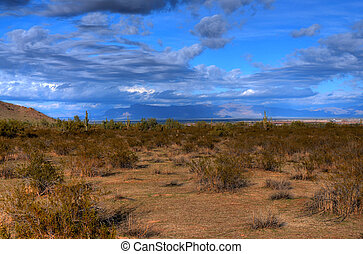 Desert Storm Forming - Clouds forming over an Arizona desert...