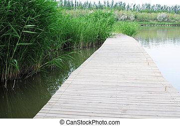 Wooden bridge in water