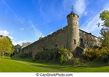 Tower in Vane - A tower in one corner of Cahir Castle, Co...