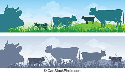 Cow on meadow - Monochrome cow silhouettes on green grass...