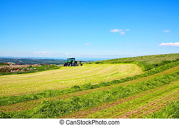 Haymaking in Scotland - Haymaking on suny day in Scotland