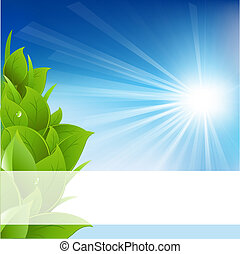 Eco Background, Isolated On White Background, Vector...