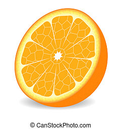 orange fruit - illustration
