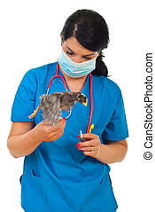 Doctor vet with chick in motion - Veterinary woman with...