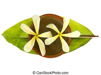 Frangipani in a bowl on a fresh banana leaf