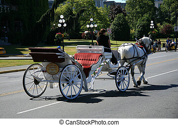 Horse and Cart - Victoria, BC, Canada - Victoria City,...
