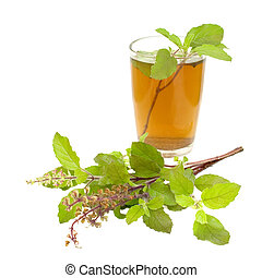 Holy Basil Tulsi Tea Ayurvedic Remedy isolated