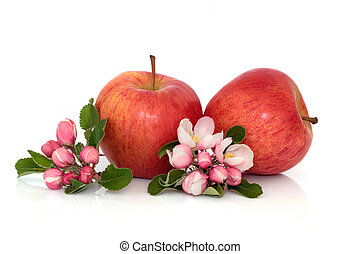 Apple Fruit with Blossom