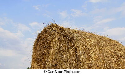 Large haystack lies on the background of a beautiful sky.