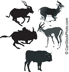 vector images of antelopes
