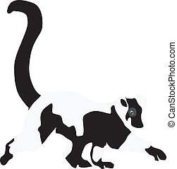 lemur - ring-tailed lemur vector