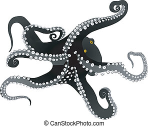 vectors octopus on a white background