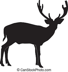 elk on a white background vecto